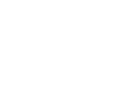 Introducing the PrimeTime Essence Experience